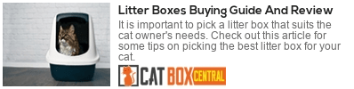 buying guide for litter box