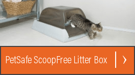 modkat litter box review