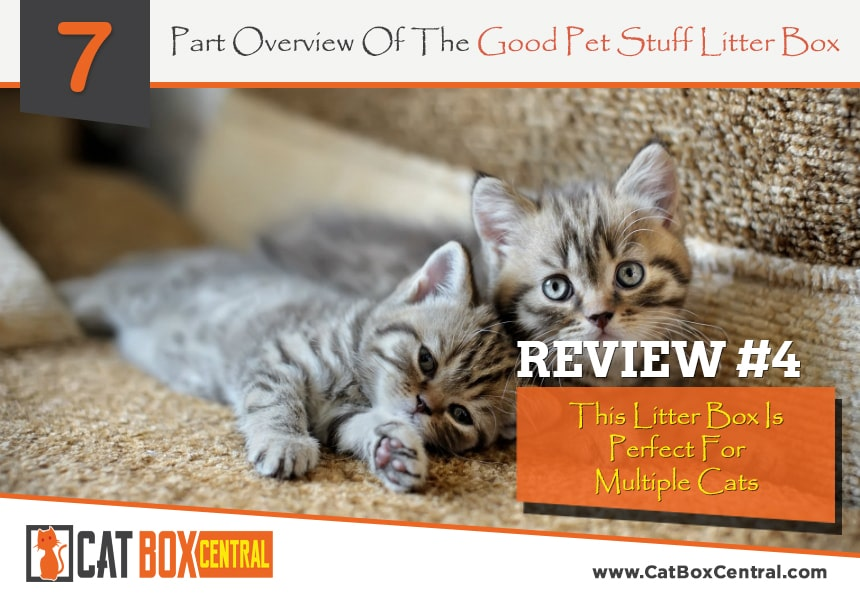good pet stuff litter box review