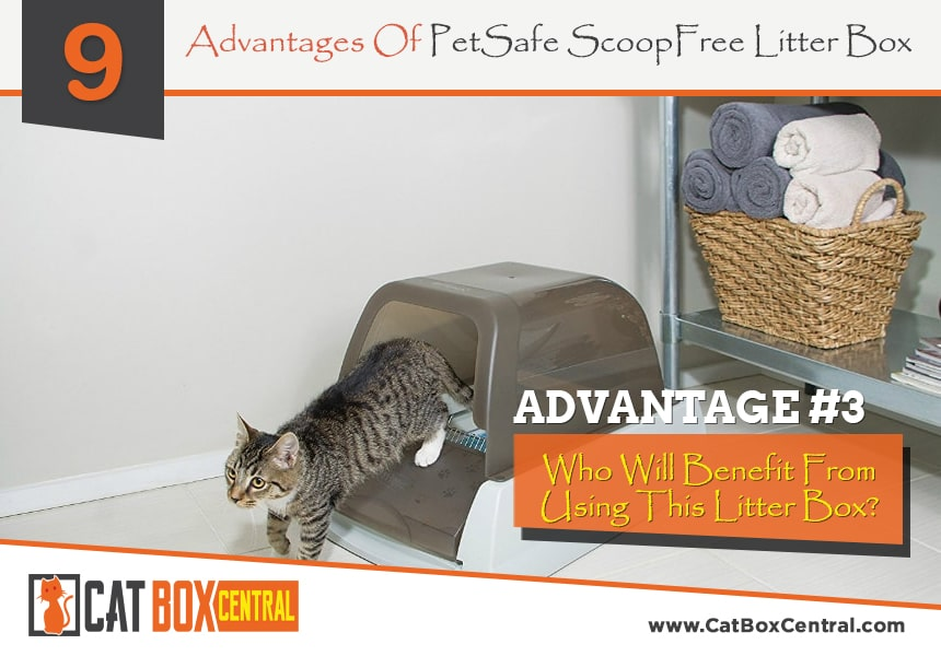 petsafe litter box review